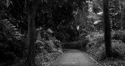 Misteri 3 kampung gaib di Indonesia