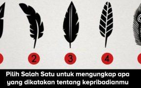 Tes kepribadian : Pilih salah satu bulu untuk mengungkapkan kepribadian