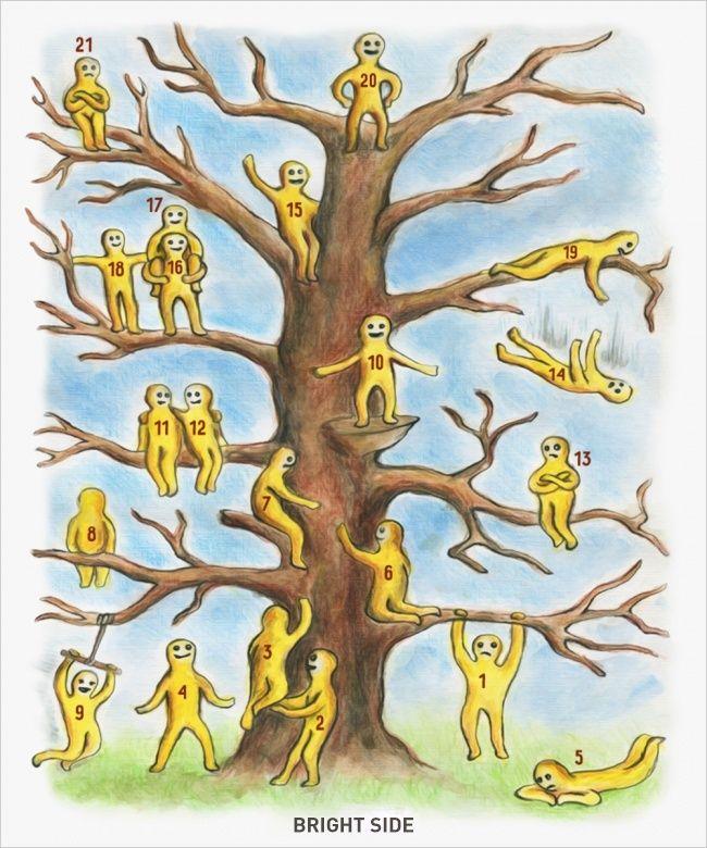 Tes kepribadian : pilih posisi di pohon - Brightside.com