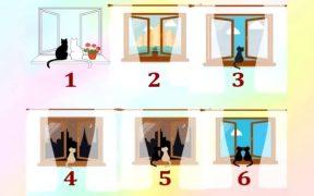Tes kepribadian jendela yang menginspirasi sukses